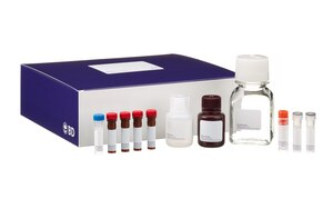 Human Intracellular Cytokine Staining Starter Kit RUO