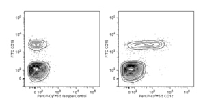 PerCP-Cy™5.5 Mouse Anti-Human CD1c F10/21A3  RUO