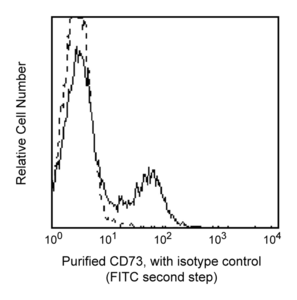 Purified Mouse Anti-Human CD73 AD2  RUO